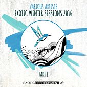 Exotic Winter Sessions 2016, Pt. 1 by Various Artists