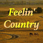 Feelin' Country de Various Artists