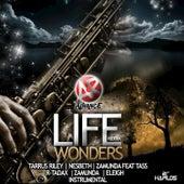 Life Wonders Riddim by Various Artists