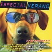 Especial Verano von Various Artists