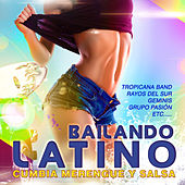 Bailando Latino. Cumbia Merengue y Salsa de Various Artists