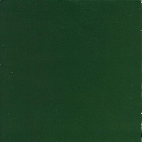 Green Album by Skankin' Pickle