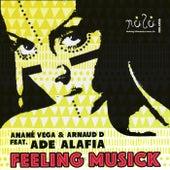 Feeling Musick (feat. Ade Alafia) by Anane