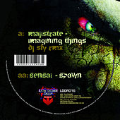 Imagining things remix / Spawn by Various Artists