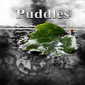 Puddles - Sun after the Rain, Pure Nature Sounds for Relaxation and Deep Sleep, Soothing Rain Sound & Healing Ocean Waves by Water Music Oasis