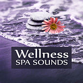 Wellness SPA Sounds – Peaceful Music, Relax, Music for Relaxation, Sound Therapy, Nature Sounds, Stress Reduction, Tranquility SPA, Massage Music, Calmness by S.P.A