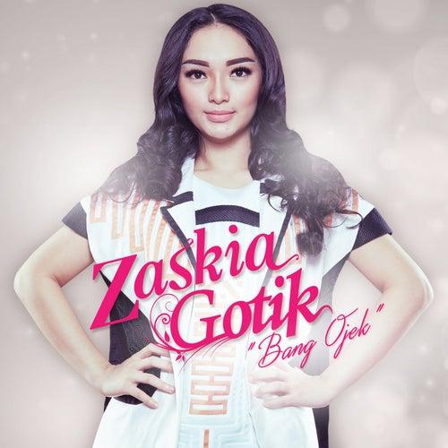 Bang ojek roy b radio edit mix single by zaskia gotik napster album reheart Image collections
