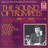 Trumpet Music - ALTENBURG, J. / VIVALDI, A. / BIBER, H. / TORELLI, G. / TELEMANN, G. (The Sound of Trumpets) (Schwarz) by Various Artists