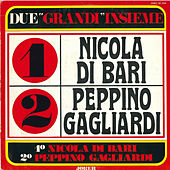Due grandi insieme by Various Artists