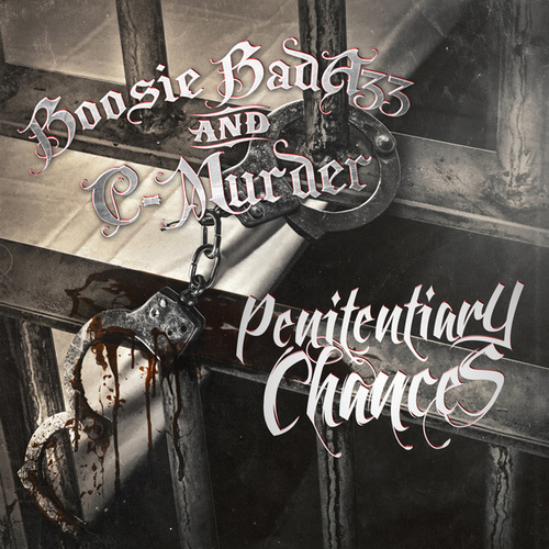 Penitentiary Chances by Boosie Badazz