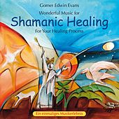 Shamanic Healing: For Your Healing Process by Gomer Edwin Evans