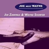 Joe Meet Wayne di Various Artists