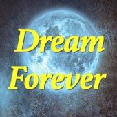Dream Forever de Various Artists