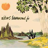 Yours to Keep by Albert Hammond Jr.