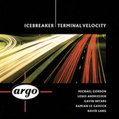 Terminal Velocity by Icebreaker