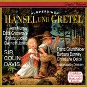 Humperdinck: Hänsel und Gretel (Highlights) by Sir Colin Davis