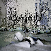 Desolation by Desolation