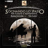 Sognando lo spazio by Elena Cecconi