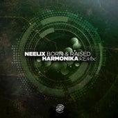 Born & Raised (Harmonika Remix) de Neelix