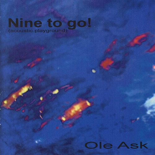 Nine To Go! by Ole Ask