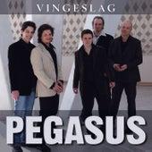 Vingeslag by Pegasus