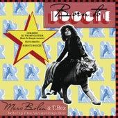Born to Boogie von Various Artists