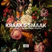 All I Want Is You (feat. Keyhole) - Single von Kraak & Smaak