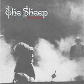 War Babies by Sheep