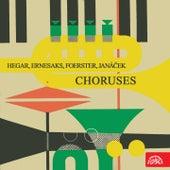 Hegar, Ernesaks, Foerster, Janáček: Choruses de Moravan Academic Singing Association