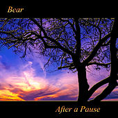 After a Pause by Bear