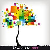 Tanzwiese - Volume Three by Various Artists