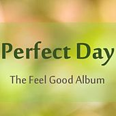 Perfect Day: The Feel Good Album by Various Artists