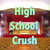 High School Crush by Various Artists