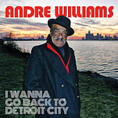 I Wanna Go Back To Detroit City von Andre Williams