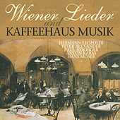 Wiener Lieder Und Kaffeehaus Musik by Various Artists