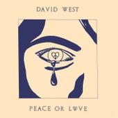 Dream on Dreamer by David West