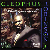 What You Need by Cleophus Robinson Jr.