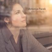 Soul Colours by Antonija Pacek