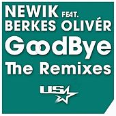 Goodbye (The Remixes) de Newik