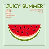 Juicy Summer (20 Fresh Deep-House Beats), Vol. 3 de Various Artists