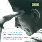 Bush: Small Pieces for Orchestra by Raphael Wallfisch