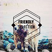 Friendly Selection, Vol. 9 by Various Artists