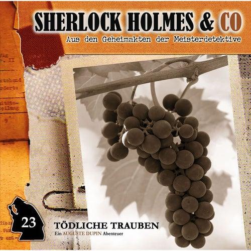 Folge 23: Tödliche Trauben von Sherlock Holmes & Co