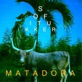 Matadora de Sofi Tukker