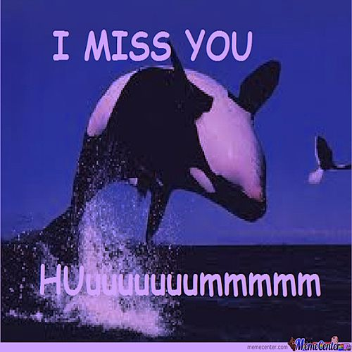 I Love You And I Miss You Single Von Schmandy Napster