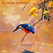 Kingfisher by Richard Anthony