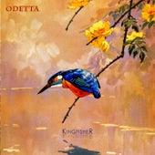 Kingfisher by Odetta