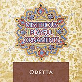 Misterious Playful Ornaments by Odetta