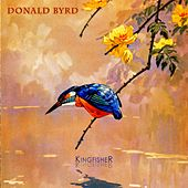 Kingfisher by Donald Byrd