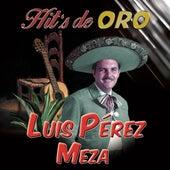 Hit's De Oro by Luis Perez Meza